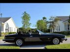 1991 Jaguar XJS for sale 101334581