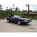 1991 Jaguar XJS V12 Convertible for sale 101560253