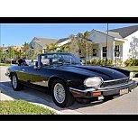 1991 Jaguar XJS for sale 101587125