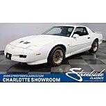 1991 Pontiac Firebird for sale 101576527