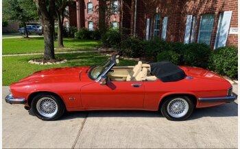 1992 Jaguar XJS V12 Convertible for sale 101499121