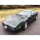 1993 Chevrolet Corvette Convertible for sale 101334063