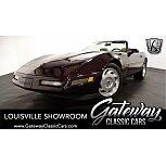 1993 Chevrolet Corvette Convertible for sale 101529931