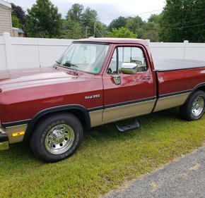 1993 Dodge D/W Truck 2WD Regular Cab D-250 for sale 101211448