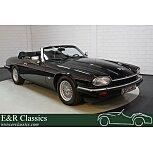 1993 Jaguar XJS for sale 101578449
