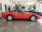 1994 Chevrolet Corvette for sale 101555292
