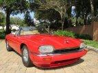 1994 Jaguar XJS for sale 101237806