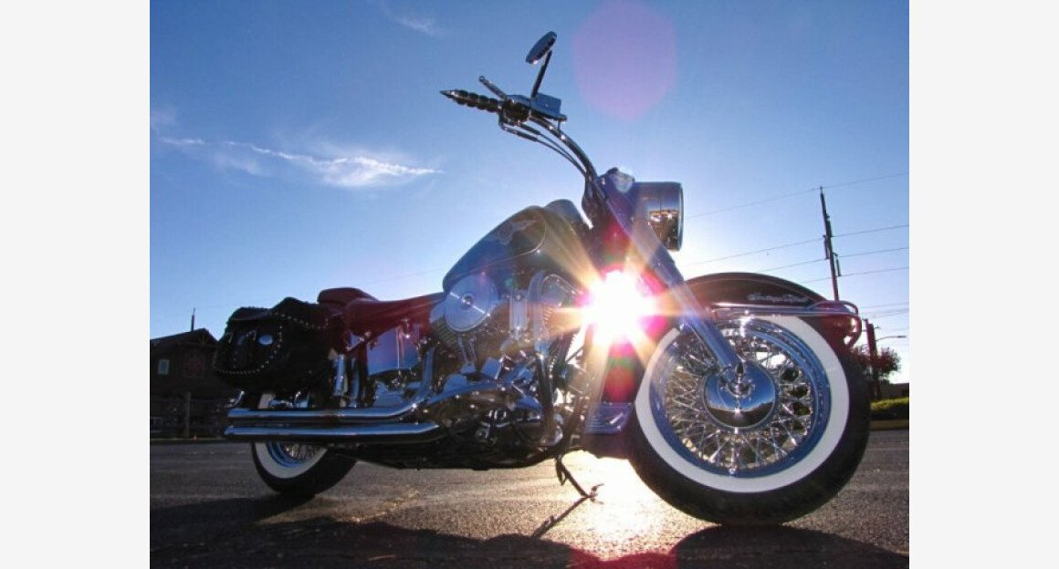 1995 Harley-Davidson Softail for sale 200544688