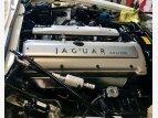 1995 Jaguar XJS V6 Convertible for sale 101486059