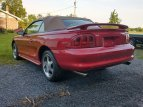 1996 Ford Mustang Cobra Convertible for sale 101516090