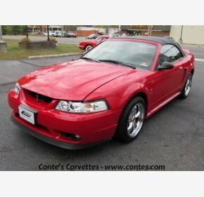 1999 Ford Mustang Cobra Convertible for sale 101268373