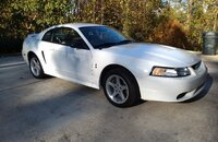 1999 Ford Mustang Cobra Coupe for sale 101339477
