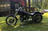 1999 Harley-Davidson Softail Custom for sale 200808241