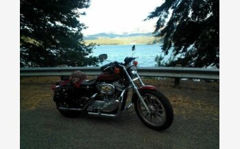 1999 Harley-Davidson Sportster for sale 200776476