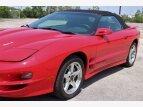 1999 Pontiac Firebird Trans Am Convertible for sale 101548857