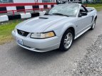 2000 Ford Mustang Convertible for sale 101540899