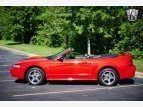 2000 Ford Mustang GT for sale 101545693