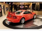 2000 Ford Mustang for sale 101557850