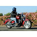 2000 Honda Shadow for sale 201181961