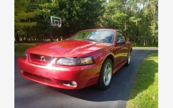 2001 Ford Mustang Cobra Coupe for sale 101486791