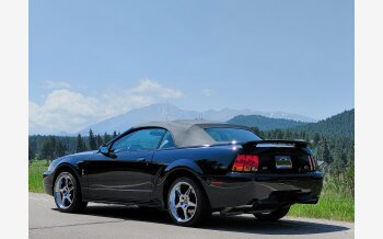 2001 Ford Mustang Cobra Convertible for sale 101578374