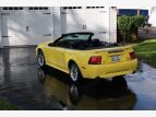 2001 Ford Mustang for sale 100817844