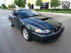 2001 Ford Mustang GT for sale 101503728