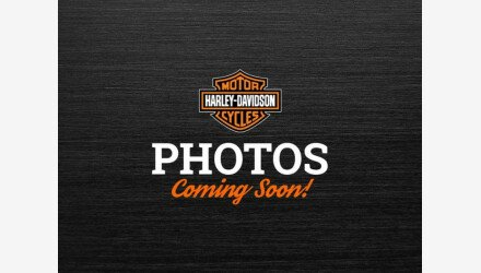2001 Harley-Davidson Shrine for sale 201074061