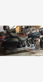 2001 Harley-Davidson Softail for sale 200613047
