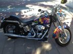 2001 Harley-Davidson Softail for sale 201148176