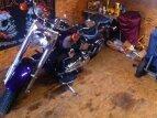 2001 Harley-Davidson Softail for sale 201149453