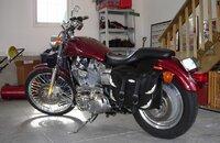2001 Harley-Davidson Sportster 883 Custom for sale 200755272