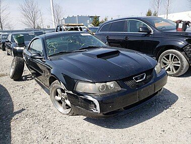 2002 Ford Mustang GT Coupe for sale 101503268