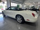 2002 Ford Thunderbird for sale 101570268