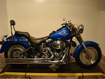 2002 Harley-Davidson Softail for sale 200493555
