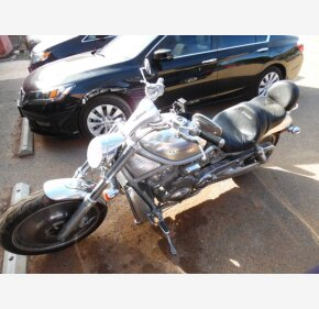 2002 Harley-Davidson V-Rod for sale 200135984