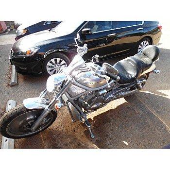 2002 Harley-Davidson V-Rod for sale 200135984