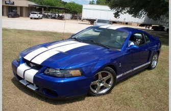 2003 Ford Mustang Cobra Coupe for sale 101191279