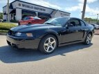 2003 Ford Mustang for sale 101494727