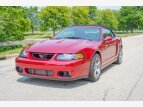2003 Ford Mustang Cobra Convertible for sale 101553895