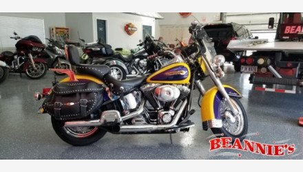 2004 Harley-Davidson Softail for sale 200819100