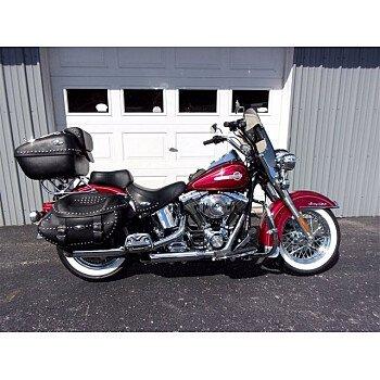 2004 Harley-Davidson Softail for sale 200983755