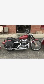 2004 Harley-Davidson Sportster for sale 200698438