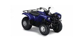 2004 Yamaha Grizzly 125 125 specifications