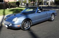 2005 Ford Thunderbird for sale 101363070