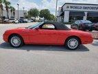 2005 Ford Thunderbird for sale 101494723