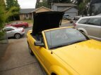 2006 Ford Mustang Convertible for sale 101187046
