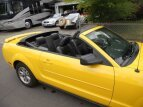 2006 Ford Mustang Convertible for sale 101586951