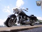 2006 Harley-Davidson Softail for sale 201064339