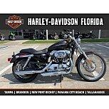 2006 Harley-Davidson Sportster for sale 200779366